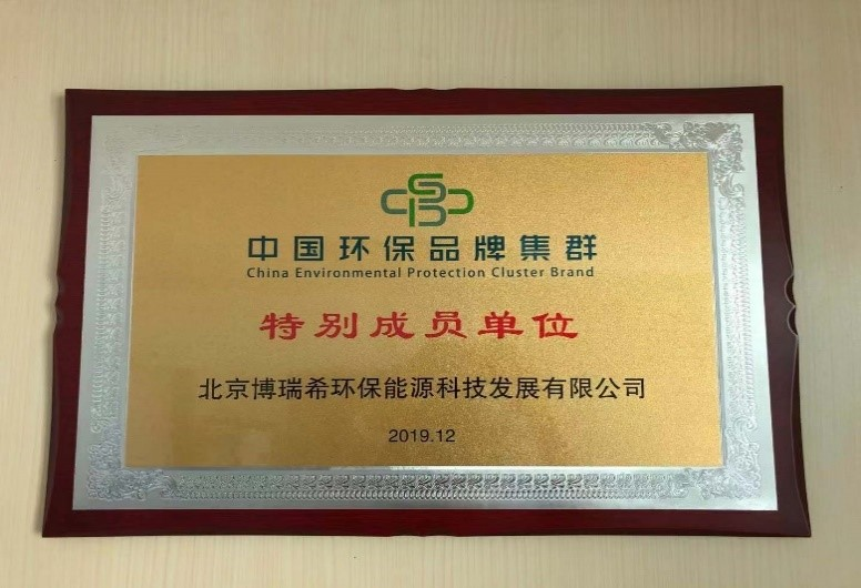 Special Member: Beijing BRISEA Energy and Environmental Technology Co.